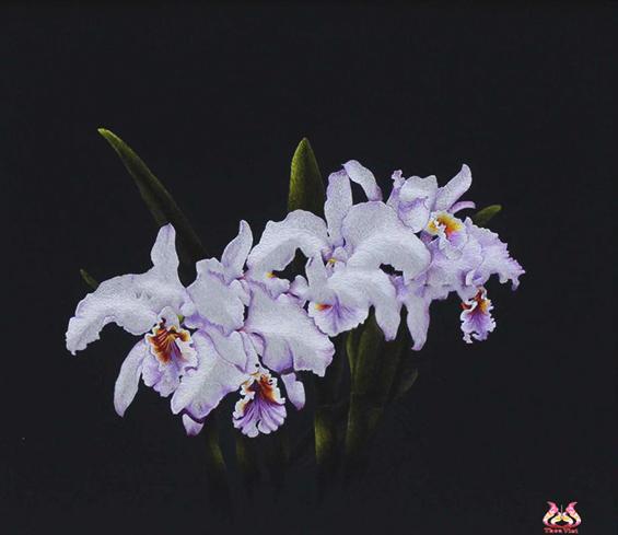 tranh thêu hoa lan trắng MHOA0137