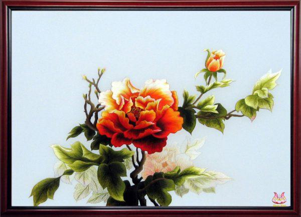 Peony Flowers 1