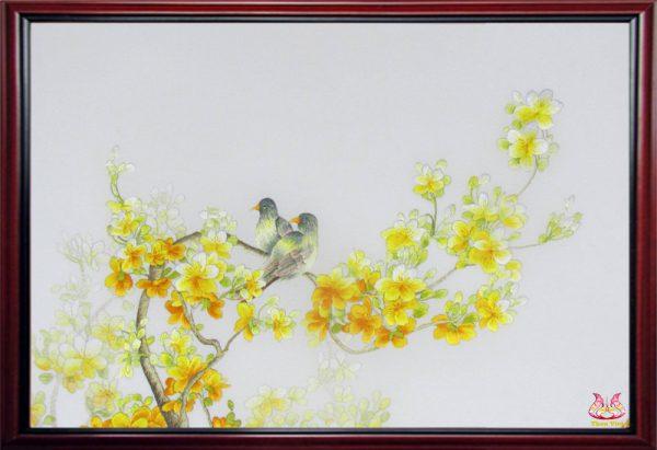 Mai vàng (MHOA0107) 1